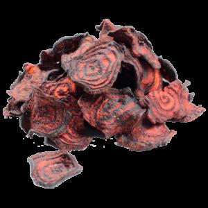 Chips de Betabel con Sal de Mar - 1 Kg